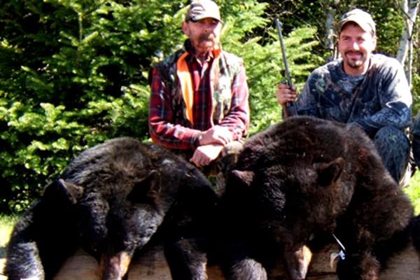 EAI-Outdoors-Ontario-Bear