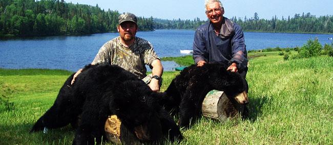 EAI-Outdoors-Bear