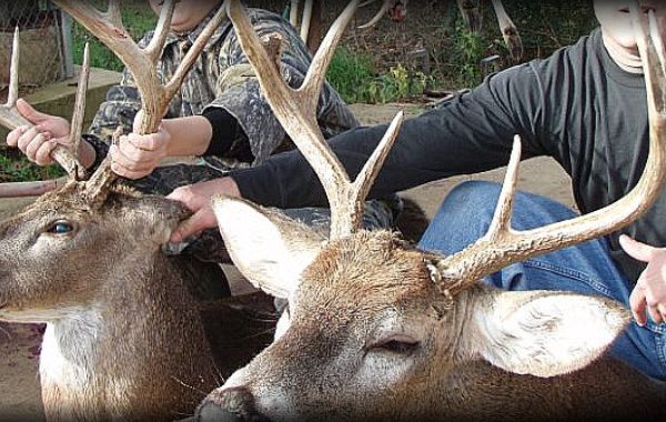 EAI Outdoors Whitetail Hunt